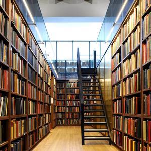 Библиотеки Базарного Сызгана