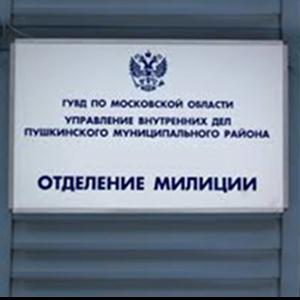 Отделения полиции Базарного Сызгана